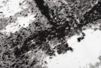 Dywan nowoczesny Q541D MAYA PP ESM biały